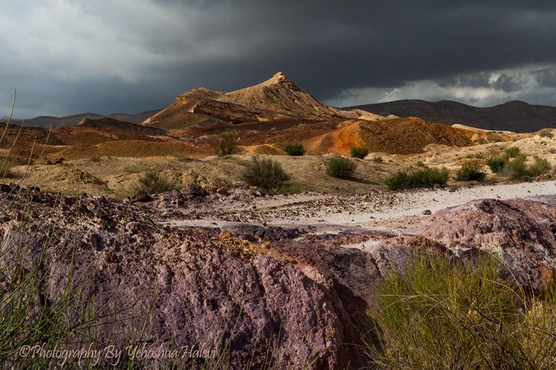Negev Desert Color Israel Yehoshua Halevi