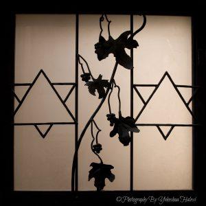 Halevi, photography, workshop, Israel, Tzfat, Safed